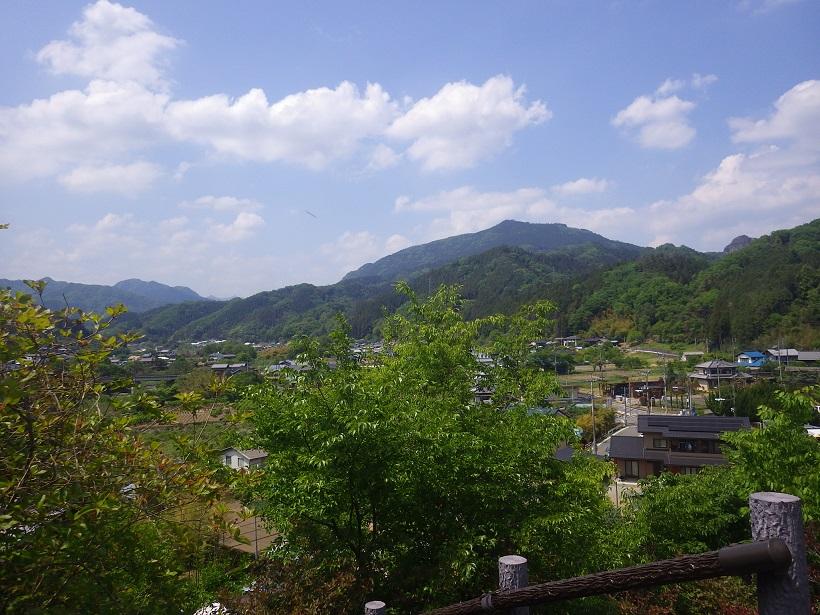歴史館西側眺望(5月)
