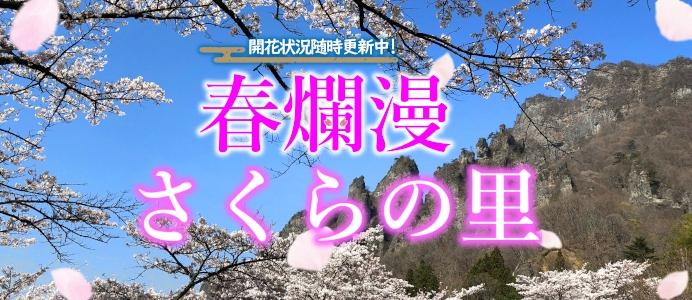 管理者用:sakuranosato_s.jpgの画像