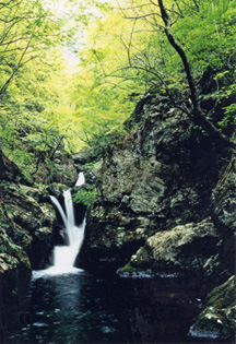 奥栗山渓谷の写真1