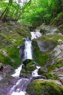 奥栗山渓谷の写真2