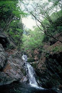 奥栗山渓谷の写真3